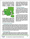 0000074889 Word Template - Page 4