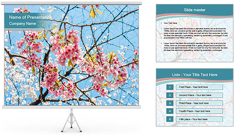 0000074896 PowerPoint Template