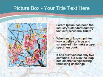 0000074896 PowerPoint Templates - Slide 13