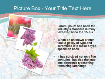 0000074896 PowerPoint Template - Slide 17