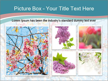 0000074896 PowerPoint Templates - Slide 19