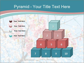 0000074896 PowerPoint Templates - Slide 31