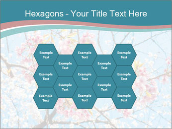 0000074896 PowerPoint Templates - Slide 44