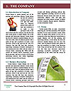0000074899 Word Templates - Page 3