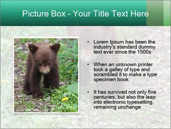 0000074901 PowerPoint Templates - Slide 13
