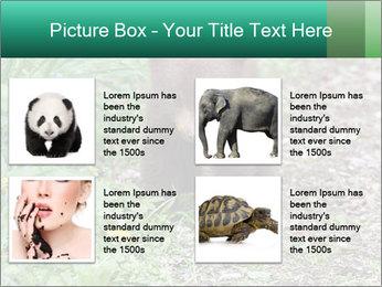 0000074901 PowerPoint Templates - Slide 14