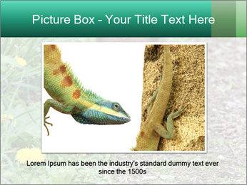 0000074901 PowerPoint Templates - Slide 16