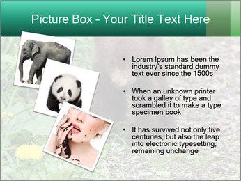 0000074901 PowerPoint Templates - Slide 17