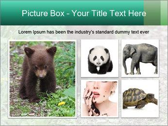 0000074901 PowerPoint Templates - Slide 19