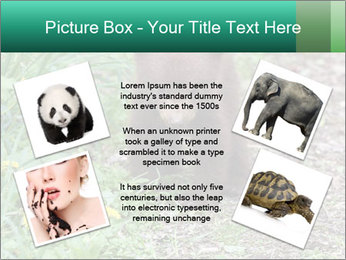 0000074901 PowerPoint Templates - Slide 24
