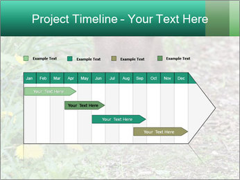 0000074901 PowerPoint Templates - Slide 25