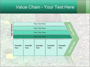 0000074901 PowerPoint Templates - Slide 27
