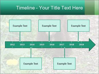 0000074901 PowerPoint Templates - Slide 28