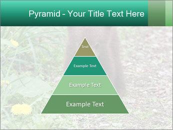0000074901 PowerPoint Templates - Slide 30