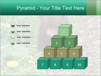 0000074901 PowerPoint Templates - Slide 31