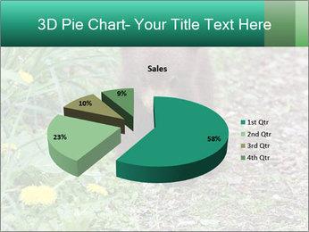 0000074901 PowerPoint Templates - Slide 35