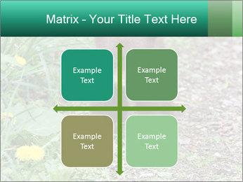 0000074901 PowerPoint Templates - Slide 37