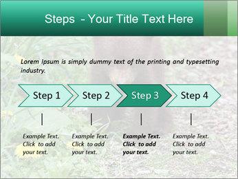 0000074901 PowerPoint Templates - Slide 4