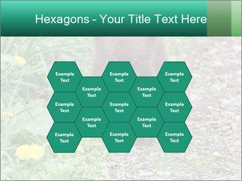 0000074901 PowerPoint Templates - Slide 44