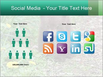 0000074901 PowerPoint Templates - Slide 5