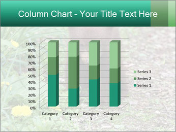 0000074901 PowerPoint Templates - Slide 50