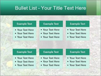 0000074901 PowerPoint Templates - Slide 56