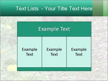 0000074901 PowerPoint Templates - Slide 59