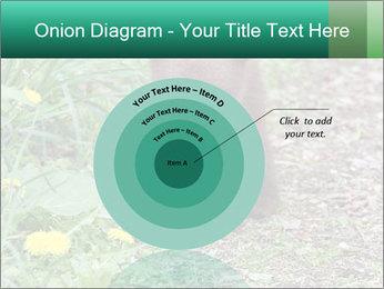 0000074901 PowerPoint Templates - Slide 61