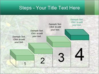 0000074901 PowerPoint Templates - Slide 64