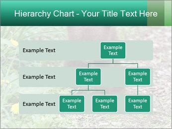 0000074901 PowerPoint Templates - Slide 67