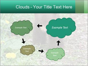 0000074901 PowerPoint Templates - Slide 72