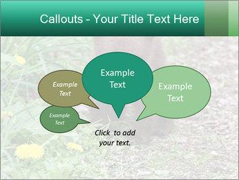 0000074901 PowerPoint Templates - Slide 73