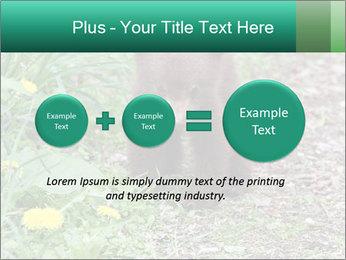0000074901 PowerPoint Templates - Slide 75