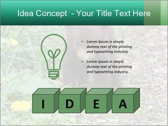 0000074901 PowerPoint Templates - Slide 80