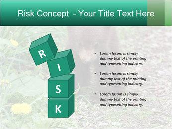 0000074901 PowerPoint Templates - Slide 81