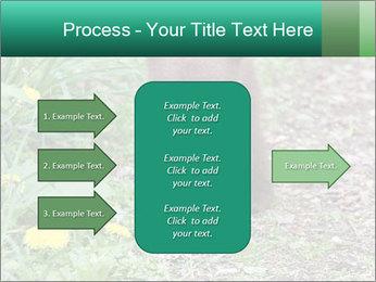 0000074901 PowerPoint Templates - Slide 85