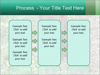 0000074901 PowerPoint Templates - Slide 86
