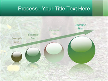 0000074901 PowerPoint Templates - Slide 87