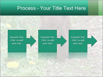 0000074901 PowerPoint Templates - Slide 88