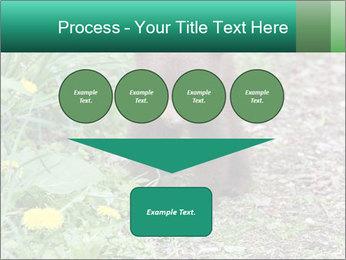 0000074901 PowerPoint Templates - Slide 93