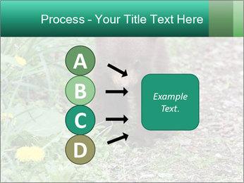 0000074901 PowerPoint Templates - Slide 94