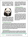 0000074901 Word Templates - Page 4