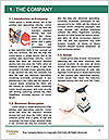 0000074903 Word Template - Page 3