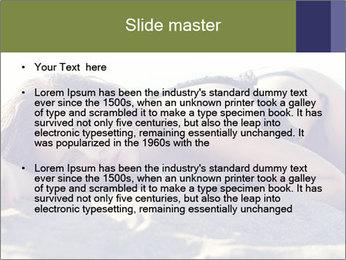 0000074907 PowerPoint Templates - Slide 2