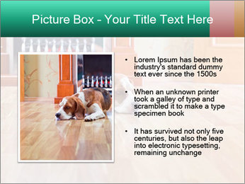 0000074912 PowerPoint Template - Slide 13