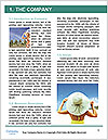 0000074918 Word Template - Page 3