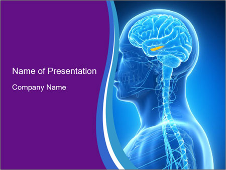 0000074926 PowerPoint Templates