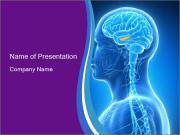0000074926 PowerPoint Templates