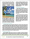 0000074929 Word Template - Page 4