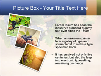 0000074940 PowerPoint Template - Slide 17